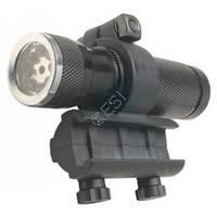 Flashlight & Laser with Mount